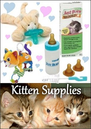 Kitten Supplies
